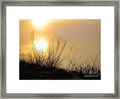 Framed Print featuring the photograph Dawn Of A New Day by Robyn King