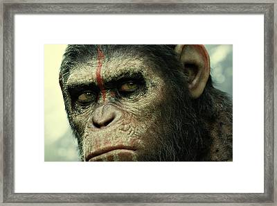 Dawn Of The Planet Of The Apes  Framed Print by Movie Poster Prints