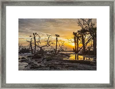 Dawn Silhouettes 06 Framed Print