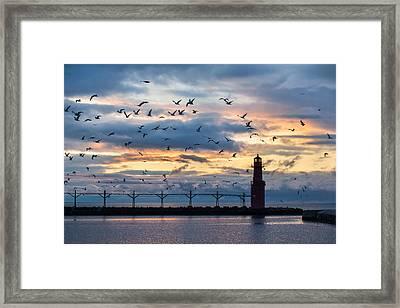 Dawn's Early Flight Framed Print