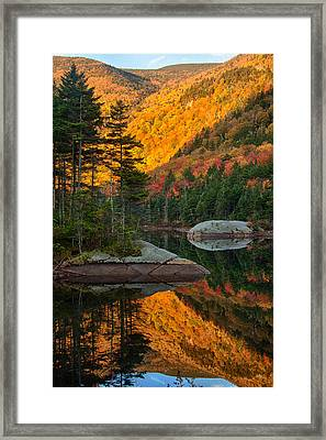 Dawns Foliage Reflection Framed Print