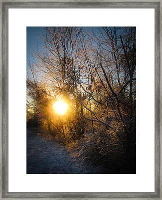 Dawn's Promise Framed Print by Jessica Brawley