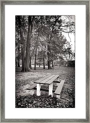Day At The Park Framed Print by John Rizzuto