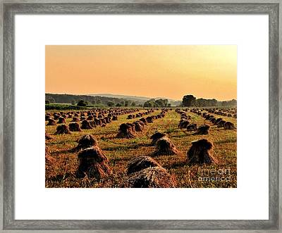 Day Is Done Framed Print by Marilyn Smith