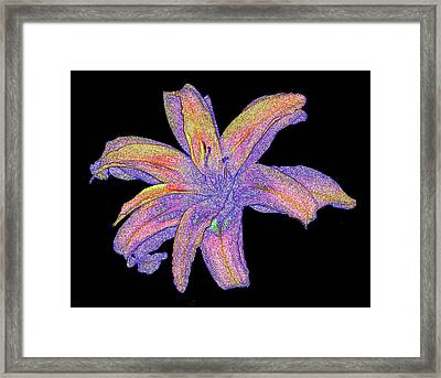 Framed Print featuring the photograph Day Lily #3 by Jim Whalen