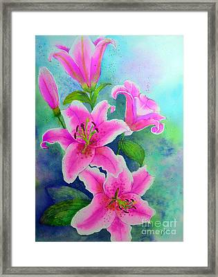 Day Lily Delight Framed Print by Dion Dior