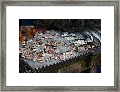 Day Market - Pak Chong Thailand - 011318 Framed Print by DC Photographer