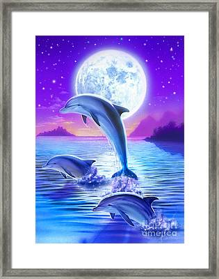 Day Of The Dolphin Framed Print by Robin Koni