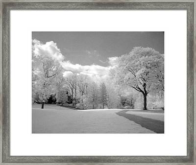 Day Walk Framed Print by Jerome Moore