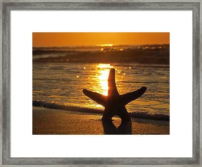 Daybreak Framed Print by Nikki McInnes