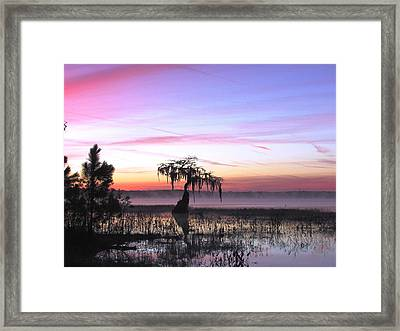 Daybreak Framed Print by Will Boutin Photos