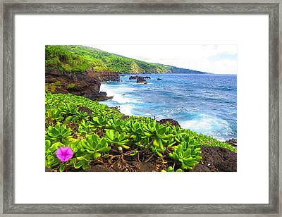 Daydreaming Of The Ocean Framed Print by Melanie Beckler