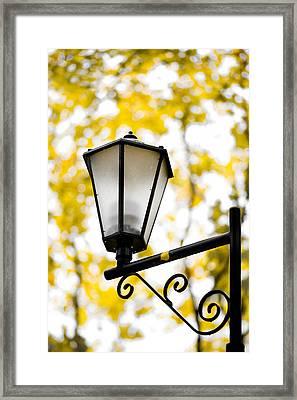 Daylight - Featured 3 Framed Print by Alexander Senin