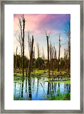 Framed Print featuring the photograph Daylight In The Swamp by Lars Lentz