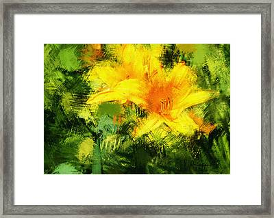Dayliles Framed Print