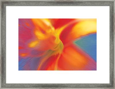 Framed Print featuring the digital art Daylily by David Davies