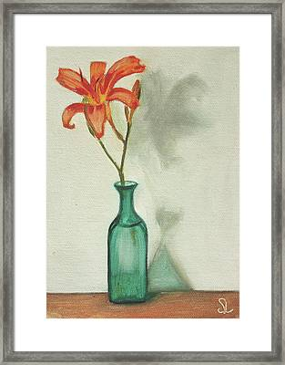 Daylily Framed Print by Sarah Lynch