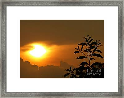 Day's Done My Sun Framed Print
