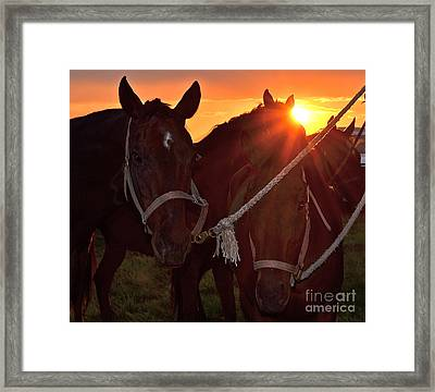 Framed Print featuring the photograph Days End by Barbara Dudley