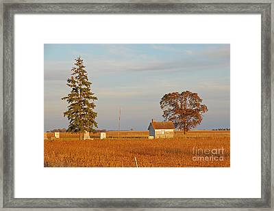 Framed Print featuring the photograph Days End by Mary Carol Story