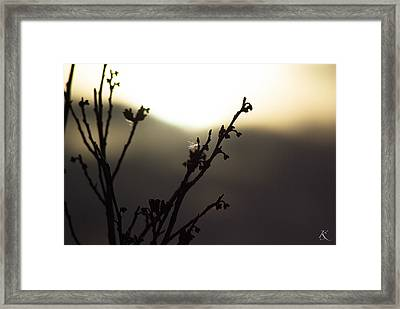 Days End Serenity Framed Print