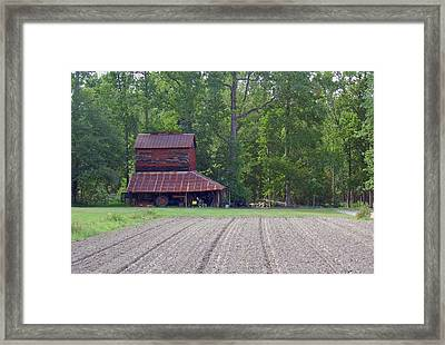 Days Gone By--tobacco Barn Series  Framed Print by Suzanne Gaff