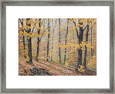 Days Of Autumn Framed Print