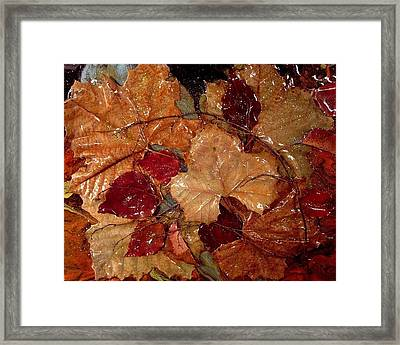 Days Of Autumn Framed Print by Patrick Mock