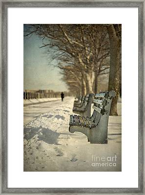 Days Of Cold Chills Framed Print