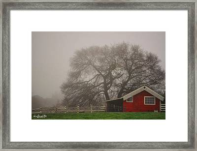 Days Of Fall Framed Print by Sarai Rachel