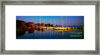 Daytona Beach Florida Inland Waterway Private Boat Yard With Bird   Framed Print by Tom Jelen