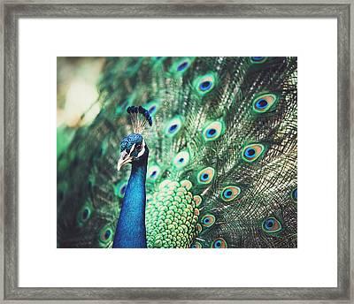 Dazzling Framed Print
