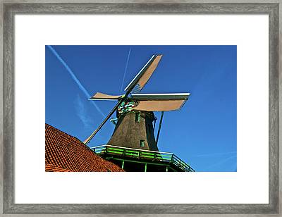 Framed Print featuring the photograph De Kat Blue Skies by Jonah  Anderson