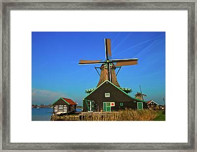 Framed Print featuring the photograph De Kat On De Zaan by Jonah  Anderson