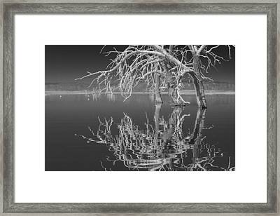 Dead Arch Black And White Framed Print by Scott Campbell