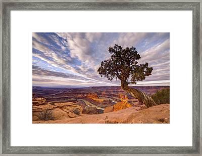 Dead Horse Point Sunrise Framed Print by Dustin  LeFevre