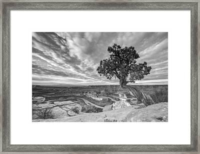 Dead Horse Point Sunrise In Black And White Framed Print by Dustin  LeFevre