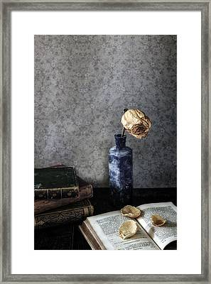 Dead Rose Framed Print by Joana Kruse