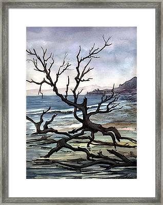 Framed Print featuring the painting Dead Sea Inhabitant by Mikhail Savchenko