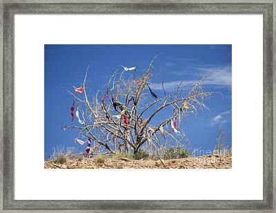 Dead Tree Covered In Womens Bras Framed Print by Bryan Mullennix