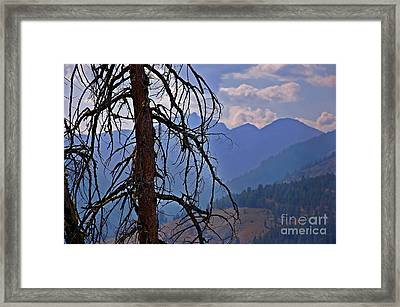 Dead Tree Mountains Landscape Framed Print by Valerie Garner