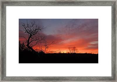 Dead Tree Sunrise Framed Print