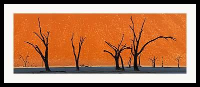 Namib Naukluft National Park Framed Prints