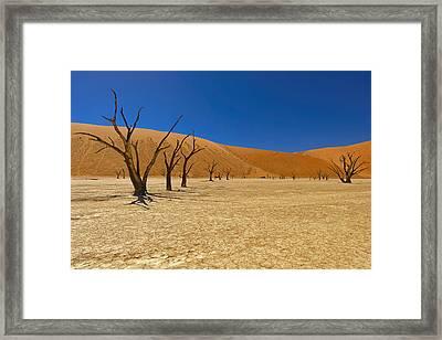 Dead Trees In Naukluft Park Namib Desert Framed Print