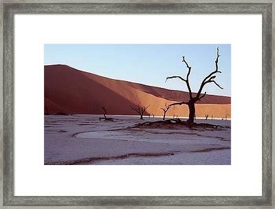 Dead Vlei Framed Print