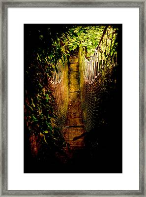 Deadly Path Framed Print by Loriental Photography