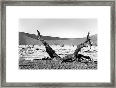 Deadvlei Framed Print by Susan Chandler