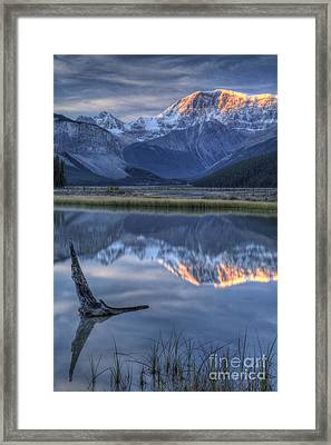 Deadwood At Beauty Creek Sunrise Framed Print by Brian Stamm
