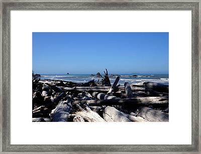 Deadwood Horizon Framed Print
