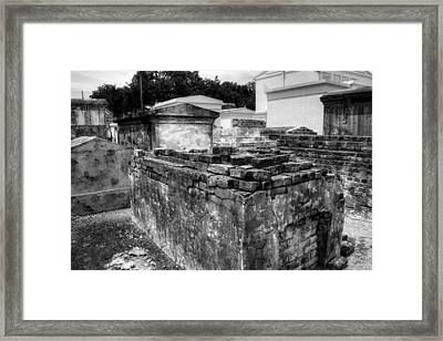 Death And Decay In Black And White Framed Print